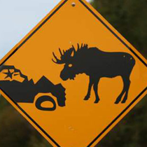 roadside display signs10